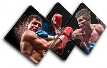 Ricky Hatton Boxing Sports - 13-2202(00B)-MP19-LO